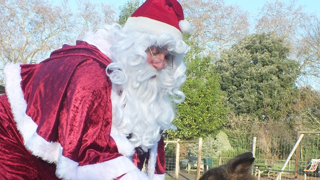 Santa is coming to the zoo